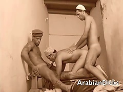 Cock Sucking Arabian